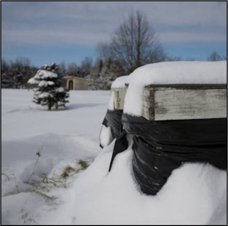 Image for Post - Bee Cozy Winter Bee Hive Wraps