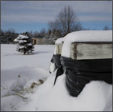 Image for Bee Cozy Winter Bee Hive Wraps